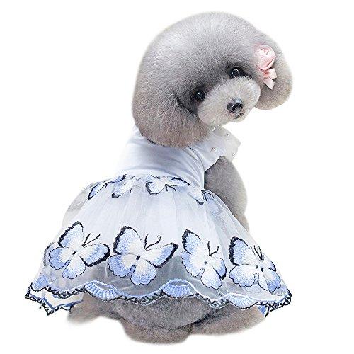 succeedtop Haustier-Kostüm für Mädchen/Jungen/kleine Hunde/Katzen, Schmetterlingskleid, süßer
