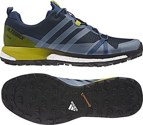 adidas Terrex Agravic Gtx, Scarpe da Escursionismo Uomo Blu (Azubas/Negbas/Limuni)