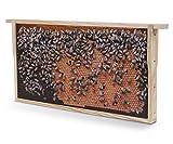 WACHSMACHER Bienenwaben-Bild: Dunkle Brutwabe, Geschenkidee für Imker und Bienenfreunde, Bienen Geschenk, Dekoration