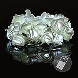 Nipach GmbH Rosenblütenkette mit 20 LED Weiß Batterie Transparentes Kabel Lichterkette mit Blumen Kunstblumen Weihnachtsdeko Valentinstag Deko für Innen