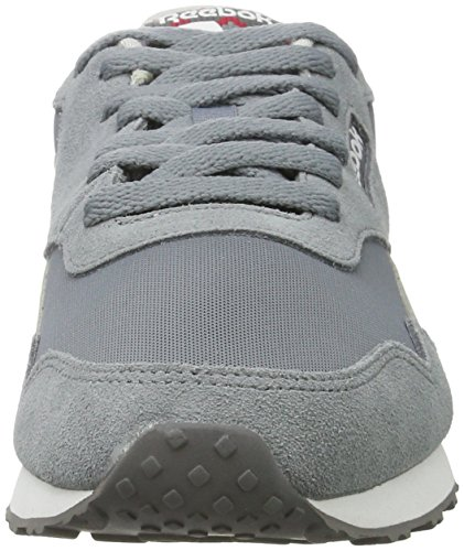 Reebok Bd3599, Sneakers trail-running homme Gris (Asteroid Dust/seaside Grey/ash Grey/fire Red/white)
