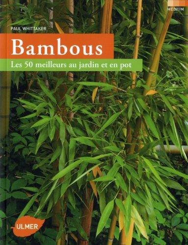 bambous-les-50-meilleurs-au-jardin-et-en-pot