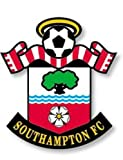 Southampton Fc - Season Review 2007/2008 [Import anglais]