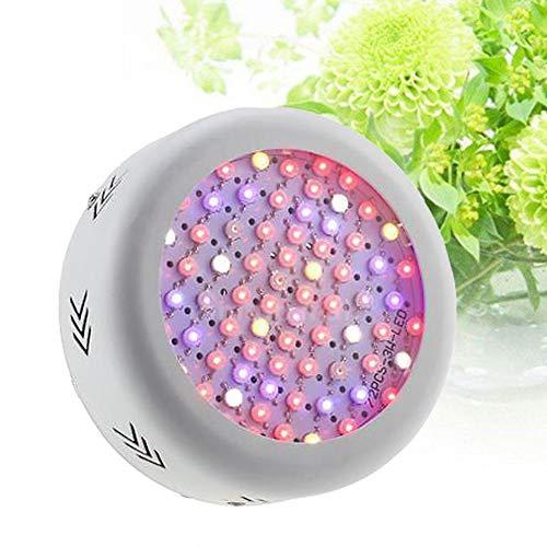 Qnlly 216W 72LEDs Plante Grow Light Spectre Complet Légumes Herbes Fleurs Lampe à Effet de Serre d'intérieur Jardin hydroponiques