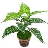 Vito546rton 1pc 9têtes artificielles Taro Plante Alocasia macrorrhiza DIY Mariage ameublement Vert
