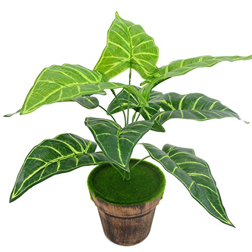 Danigrefinb 19Köpfe Kunstpflanze Taro Pfeilblatt macrorrhiza DIY Hochzeit Home Decor–Grün grün