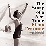 The Story of a New Name: The Neapolitan Novels, Book 2