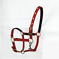 Breastplate Myyxt Equestrian Horses Leather Caballos ecuestres Bridas y riendas de Nylon (Doble Línea de Cartón), Rojo, l