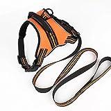 Brustgeschirr für große hunde,Hundegeschirr ausbruchsicher, Reflektierende Haustier Weste,Sitzt bequem und lässt sich auch leicht reinigen- reflektierendes orange (M(52-60cm))