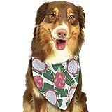 Hipiyoled Samen Pitaya-Muster-stilvoller Welpen-Bandana-Hundekatze-Geburtstags-Schal