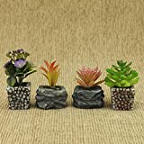 #8: AVMART Set of 4 Small Succulents Artificial Plants for Indoor/Outdoor Home, Office, Garden Lawn Decoration with Pot-04