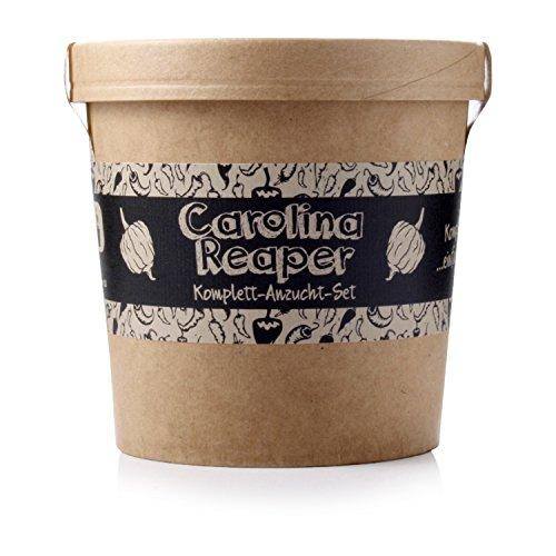 Spicy Garden Anzucht-Set für Carolina Reaper Chili - Pflanzen-Kit - Einstieg in die Planzen-Zucht - ideal zum Verschenken
