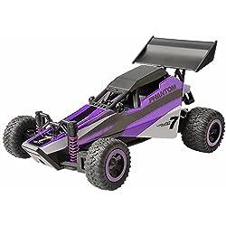 Gizmovine 1: 32 RC Coche de carreras -Alta Velocidad RC Buggy- Rápido, Deriva, Control Estupendo, Uso Interior y exterior (púrpura)