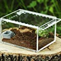 DierCosy Acryl Transparent Fütterung Box Insekt Kriechtier Transport Zuchtkäfig Container, Transparent Reptile Breeding Box