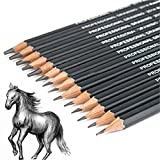 #7: Fancyku Best Quality 14pcs/ set 12B 10B 8B 7B 6B 5B 4B 3B 2B B HB 2H 4H 6H Graphite Sketching Pencils Professional Sketch Pencils Set for Drawing