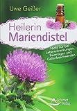 Heilerin Mariendistel: Nicht nur bei Lebererkrankungen, Reizmagen und Gallenbeschwerden