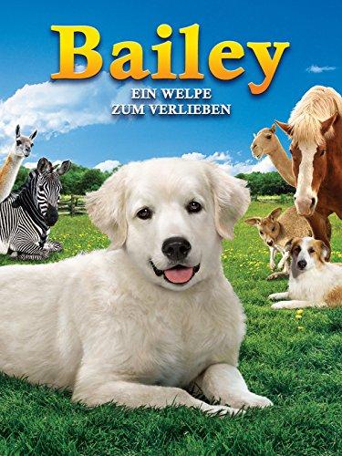 Bailey: Ein Welpe zum Verlieben