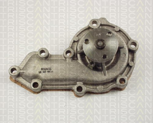 Triscan 8600 17008 Pompe à eau