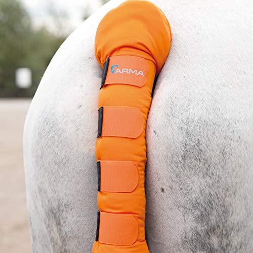 Shires - Protector acolchado para cola de caballo