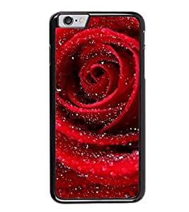 Fuson Designer Back Case Cover for Apple iPhone 6 (Rose lovely rose Beautiful Rose red Rose Red)