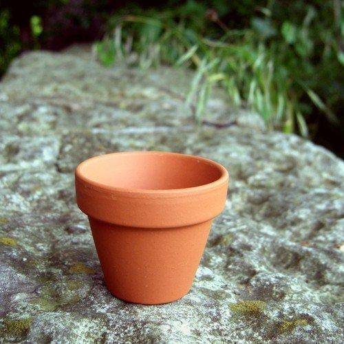 Small Terracotta Plant Pots (Pack Of 25) 57mm Diameter X 50mm High