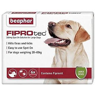 beaphar fiprotec large dog 6 pack Beaphar FIPROtec Large Dog 6 pack 51sIMdYzSDL