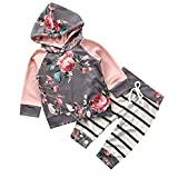 Search : Chicolife Baby Girl Sweet Floral Hoodie Trousers Sets 2pcs with Striped Pants Sweatshirt Outfit Clothes