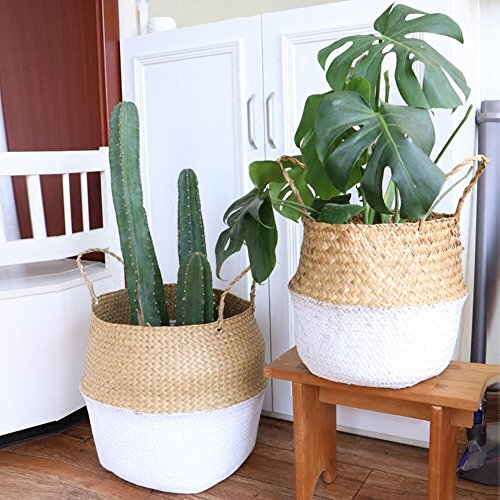 Seegras-Korb für vers. Pflanzen 22x20cm / 27x24cm / 32x28cm