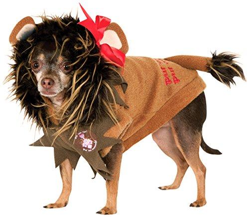 Löwe Kostüm Zauberer von Oz Shy Hund