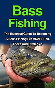Bass fishing discover the best tips tricks and for Bass fishing for beginners
