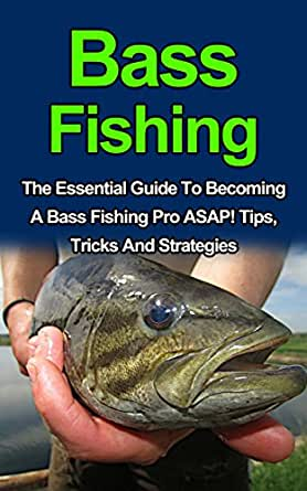 Bass Fishing: Discover The Best Tips, Tricks And ...