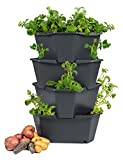 Gusta Garden Paul Potato Outdoor Blumentopf Anthrazit Hoch Aus Kunststoff