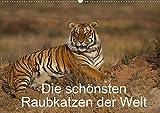 Die schönsten Raubkatzen der Welt (Wandkalender 2020 DIN A2 quer): Bilder von den schönsten Raubkatzen, dem Gepard, dem Leopard, dem Löwe und dem Tiger. (Monatskalender, 14 Seiten ) (CALVENDO Tiere)
