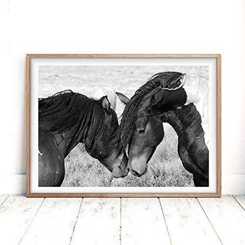 Pferd Leinwand Wandkunst schwarz-weiß Bild Wüste Fotografie Leinwand Kunstdruck Familie Wohnzimmer Wanddekoration rahmenlose Malerei 50x70cm