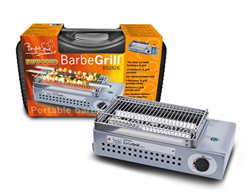 Barbegrill Einteiliger Grill aus rostfreiem Edelstahl, 39x22,7x13,6cm, Grau