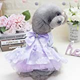 ♣ Tianya - Hundekostüme Hundekleidung Frühling und Sommer Mantel Jacke Cat Puppy Hoodie Pullover Baumwollkleidung
