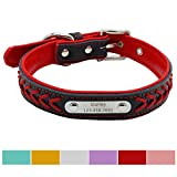 Vcalabashor Hundehalsband mit Namen und Telefonnummer,Hundehalsband Anh?nger mit Gravur,Hundehalsband Leder,S 26-33cm,Rot