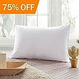Best Pillows - Morphys Deep Sleep Bed Pillow 100% Cotton Cover Review