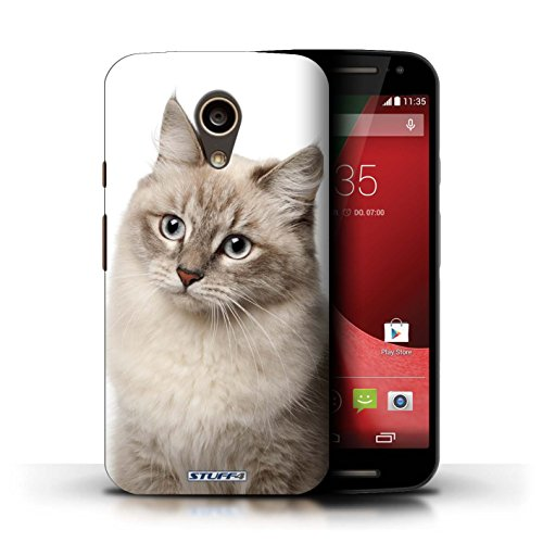 Kobalt® Imprimé Etui / Coque pour Motorola Moto G (2014) / Bleu britannique conception / Série Espèces de chats Sibérien
