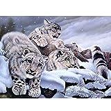 wtnhz Senza Telaio Tela di per Sala da Pranzo Bonsai di Decorazioni Olio di Quadri Leo pardng su Tela Wall Art for Wedding Decor 40x60cm