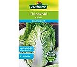 """Dehner Gemüse-Saatgut, Chinakohl, """"Kasumi"""", 5er Pack (5 x 2 g)"""