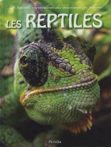 Les reptiles par Piccolia