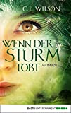 Wenn der Sturm tobt: Roman (Mystral 4)