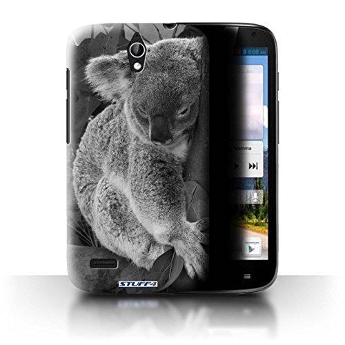 Stuff4® Hülle/Hülle für Huawei Ascend G610 / Koala Muster/Zoo-Tiere Kollektion