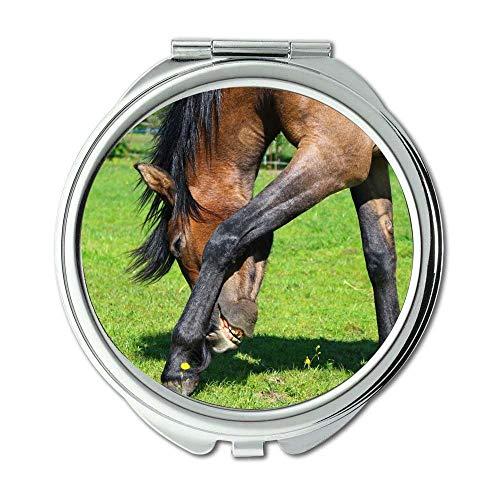 Yanteng Spiegel, Schminkspiegel, Tierfarm, Taschenspiegel, tragbarer Spiegel