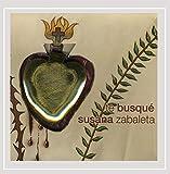 Songtexte von Susana Zabaleta - Te busqué