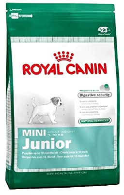 Royal Canin Mini Junior Dry Dog Food - 4 kg