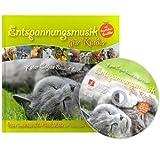Kindermusik mit Geschichtenerzähler: Kater Coljas Besuch bei den Tieren (Malbuch-Edition)