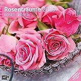 Rosenträume 2019, Wandkalender / Broschürenkalender im Hochformat (aufgeklappt 30x60 cm) - Geschenk-Kalender mit Monatskalendarium zum Eintragen