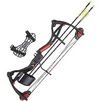 Arco composite 17 26 pounds accessories kit black fleches faretra shooting sport
